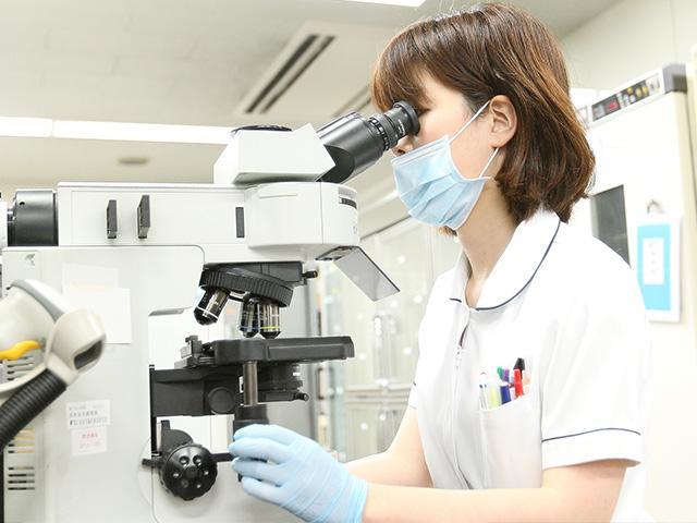 株式会社 日本医学臨床検査研究所 1枚目