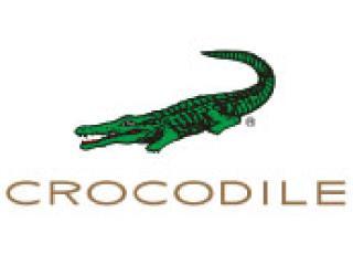 CROCODILE 1枚目