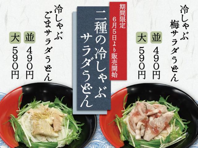 二種の冷しゃぶサラダうどん!!期間限定!!