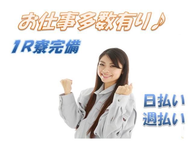株式会社 PEOPLE/pk951 草津市 1枚目