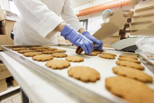 食品製造加工イメージ