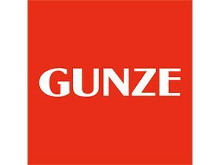GUNZE OUTLET 1枚目