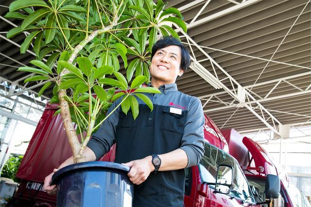 得意先を定期訪問し、植木を維持・管理。<br>前職同様に手先を動かす楽しさがあります。