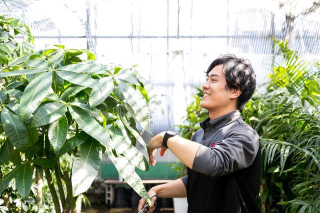 樹種に合わせたメンテナンスが仕事の鉄則。<br>お客様とのコミュニケーションが活力です。