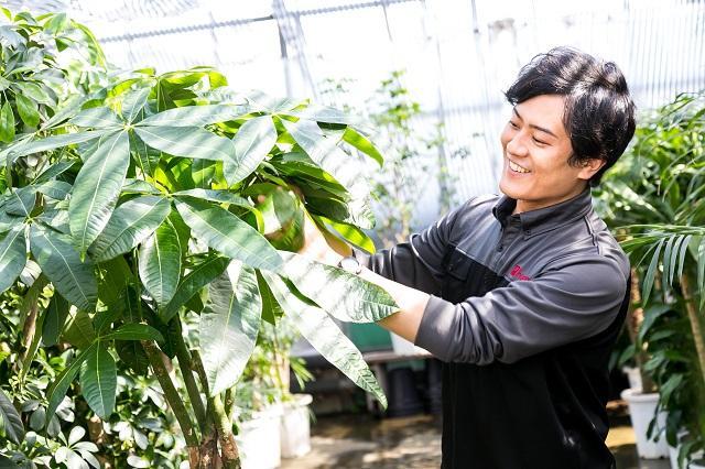 株式会社竹中庭園緑化