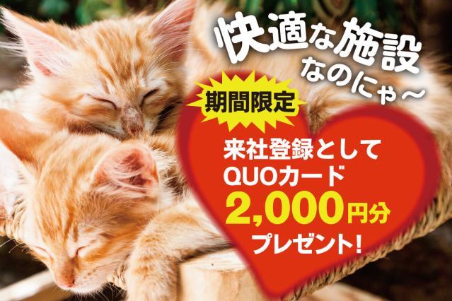 日研トータルソーシング株式会社 メディカルケア事業部 天王寺オフィス 1枚目