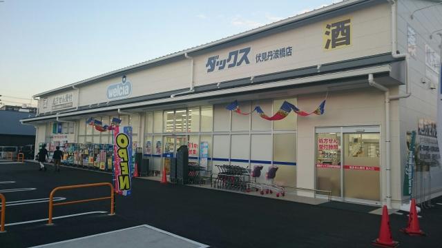 ドラッグストア ダックス亀岡大井店