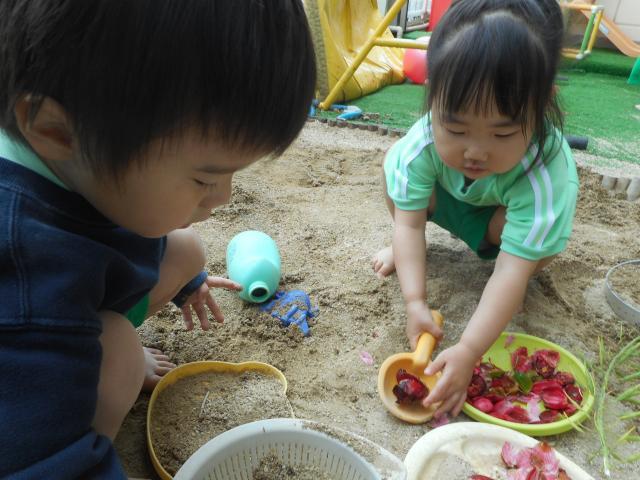 2歳児 ばら組 うさぎグループ 裏庭遊び