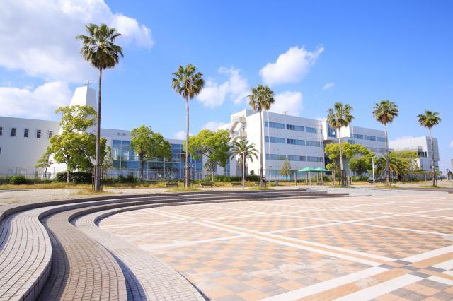 神戸国際大学