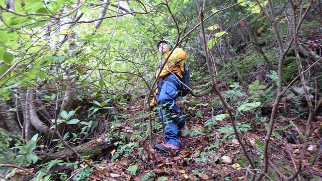登山道を歩いて、プラスチック杭や測量機器を運搬します!